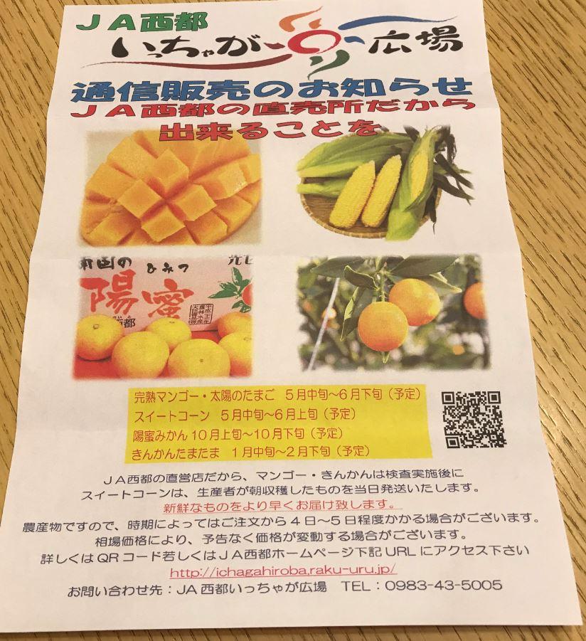 Mango06v2