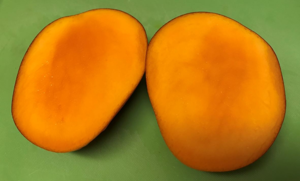 Mango10v2
