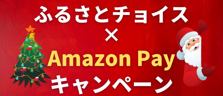 12camp-amazon-payv2