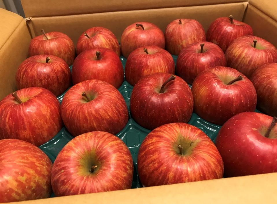 20201201-apple04