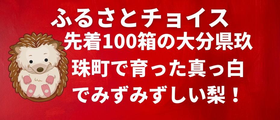 2021-08-30-furusato-choice