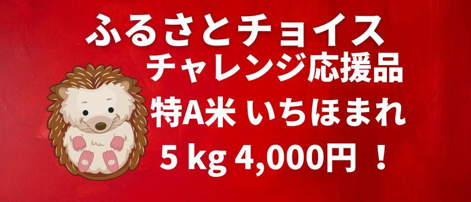 2021-08-31-furusato-choice